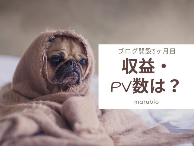 ブログ3ヶ月目の収益・PV数は?