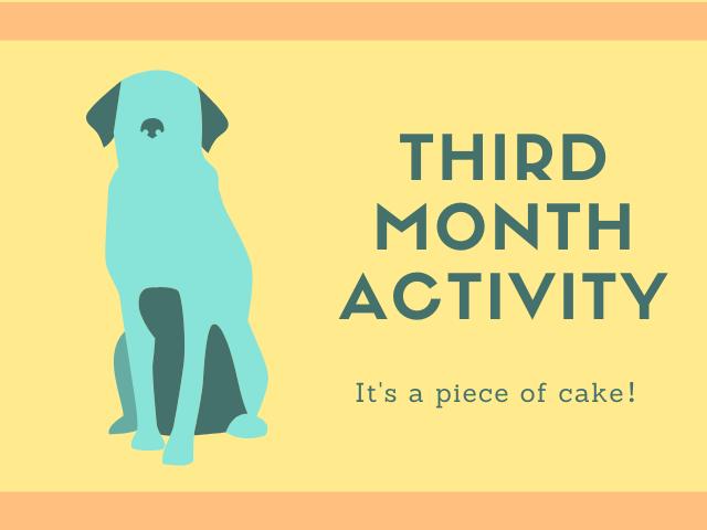 ブログ開設3ヶ月目の活動